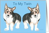 For Twin Corgi Dog, Birthday