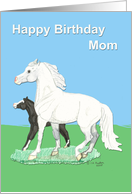 Welsh PonyMare &amp Foal Mother Birthday