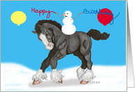 Young Shire Horse Winter Birthday