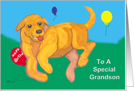 Yellow Lab Puppy Birthday for GrandSon