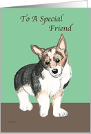 For Friend Corgi Dog, Birthday