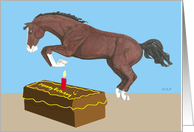 Jumping Horse Getting Older Birthday
