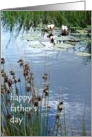 Father&rsquo;s Day Card - Waterlilies and Reeds card