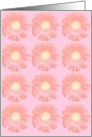 Gerbera Daisy Note Card