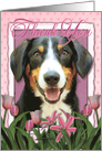 Thank you Entlebucher Mountain Dog in Pink Tulips card