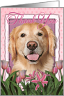 Thank you Golden Retriever Dog in Pink Tulips card