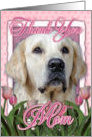 Thank You MOM Golden Retriever Dog in Pink Tulips card