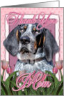 Thank You MOM Bluetick Coonhound Dog in Pink Tulips card