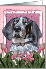 Thank You Bluetick Coonhound Dog in Pink Tulips card