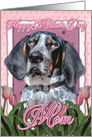 Happy Mother's Day MOM Bluetick Coonhound Dog in Pink Tulips card