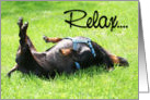 Relax Get Well Soon - Dachshund card