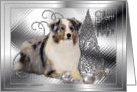 Silent Night Christmas - Australian Shepherd card
