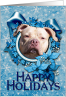 Happy Holidays - Blue Snowflakes - Pitbull - Jersey Girl card