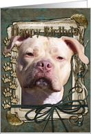 Happy Birthday - Pitbull - Jersey Girl - Stone Paws card