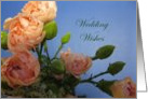 Congratulations--Wedding Wishes card