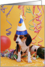 Birthday Dog card