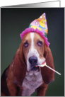 Birthday Hound card