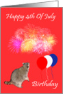 4th Of July Birthday, Raccoon watching fireworks with balloons, flag card