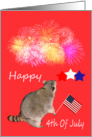 4th Of July, general, Raccoon watching fireworks with flag and stars card