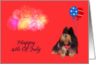 4th Of July, general, Pomeranian watching fireworks, patriotic, red card