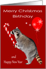 Birthday on Christmas, general, Raccoon eating candy cane, balloon card