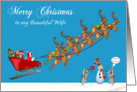 Christmas To Wife, Raccoons with sleigh, reindeer, snowman on blue card