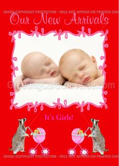 Twin Birth Announcement Photo Card, Girls Greeting Card