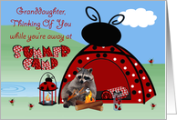 Thinking Of You, Granddaughter, At Summer Camp, raccoon camping card