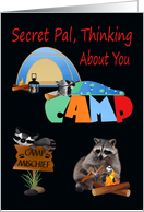 Thinking Of You, Secret Pal, At Summer Camp, raccoons camping, tent card