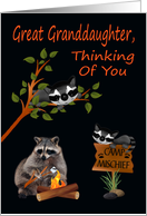 Thinking Of You, Great Granddaughter, At Summer Camp, raccoon card