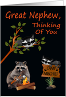Thinking Of You, Great Nephew, At Summer Camp, raccoon with bonfire card