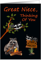 Thinking Of You, Great Niece, At Summer Camp, raccoon with bonfire card