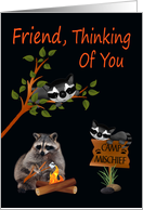 Thinking Of You, Friend, At Summer Camp, raccoon with bonfire, black card