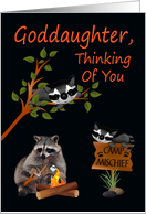 Thinking Of You, Goddaughter, At Summer Camp, raccoon with bonfire card