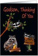 Thinking Of You, Godson, At Summer Camp, raccoon with bonfire card