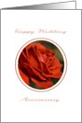 Happy Wedding Anniversary - Red Rose card