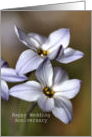 Happy Wedding Anniversary - Bulbs in flower card