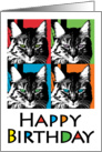 Colorful Cat birthday card