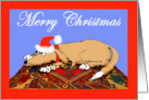 Merry Christmas, Brown dog on oriental mat. humor card