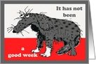 Just to say, it has not been a good week! Sorry Humour, sad grey dog. card