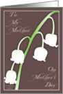 Lily of the Valley for Mother's Day card