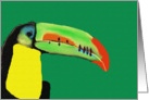 Toucan Digital Art Card