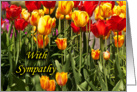 Sympathy - Loss - General - Tulips card