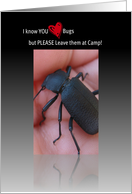 Beetle Bug Thinking of You in Camp, Beetle Photograph card