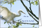 I Miss You, Why Did You Fly Away, Egret Photo, Blank Inside card