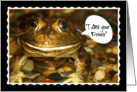 I Am Your Prince, Humorous Romance, Frog Photo, Blank Inside card