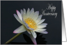 Waterlily Happy Anniversary card
