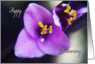 Purple Flower Happy Anniversary card
