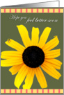 Decorative Black Eyed Susan BG Flower Feel Better card