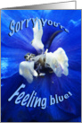 Sorry You're Feeling Blue Get Well Card